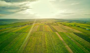 Toprağın İhtiyacı: Organik Tarım