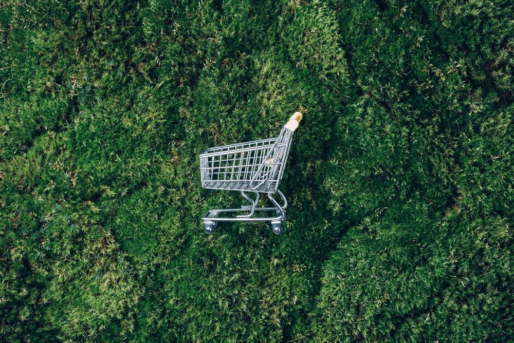 Bilinçli ve Çevreci Tüketici